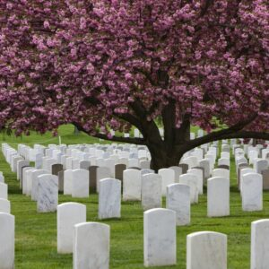 It is important to know and understand cemetery policies to help avoid abusive practices.