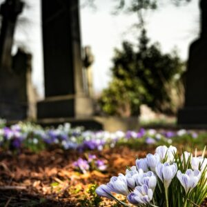 Knowing ones rights could help avoid funeral and cemetery scams.